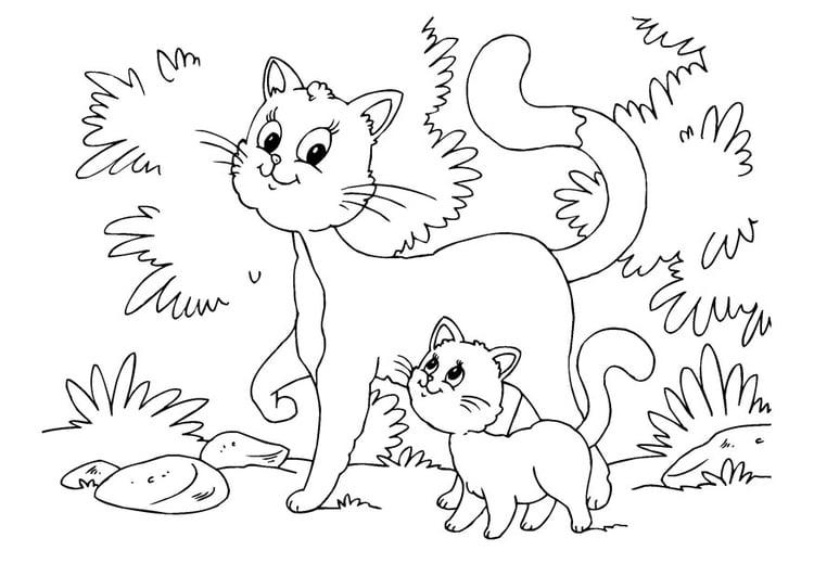 Disegno Da Colorare Gatto E Gattini Cat 22643