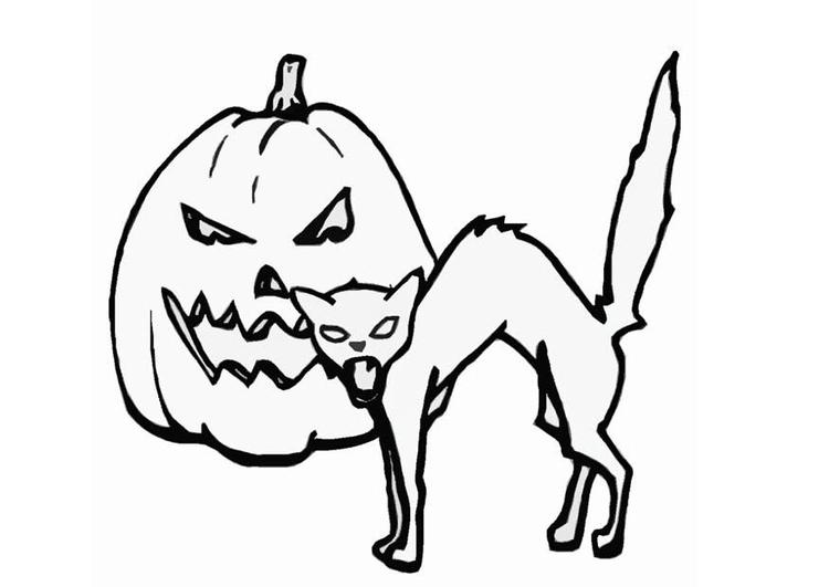 Disegno Da Colorare Gatto E Zucca Cat 16552