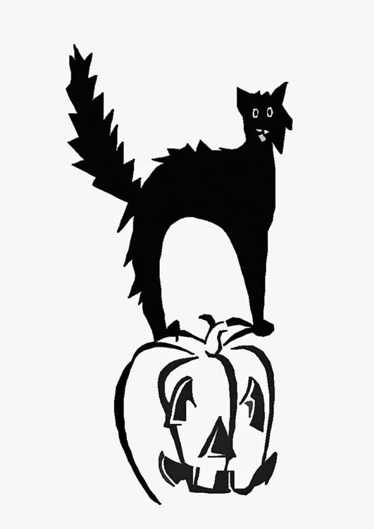 Disegno Da Colorare Gatto Nero Sulla Zucca Cat 16548