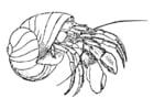 Disegno da colorare granchio eremita