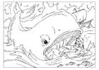 Disegno da colorare Jona