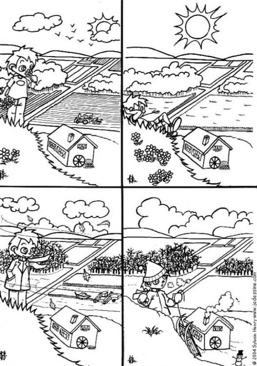 Disegno Da Colorare Le 4 Stagioni Cat 6435 Images