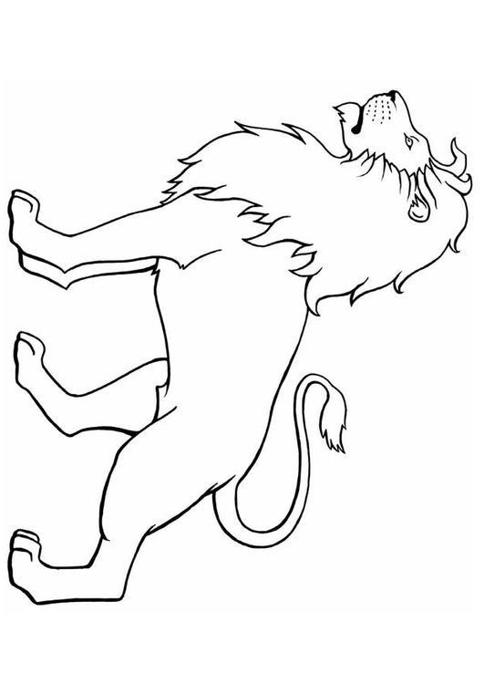 Disegno Da Colorare Leone Cat 8904