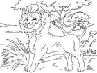 Disegno da colorare leone