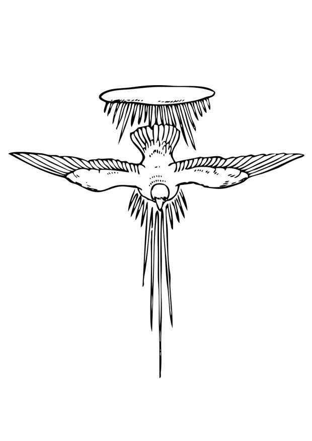 Preferenza Disegno da colorare lo Spirito Santo - Cat. 17377. JZ32
