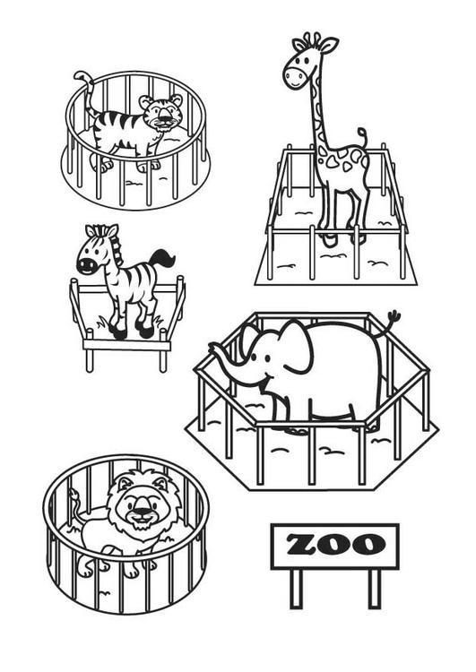 Disegno da colorare lo zoo cat 17704 - Zoo animali da colorare ...