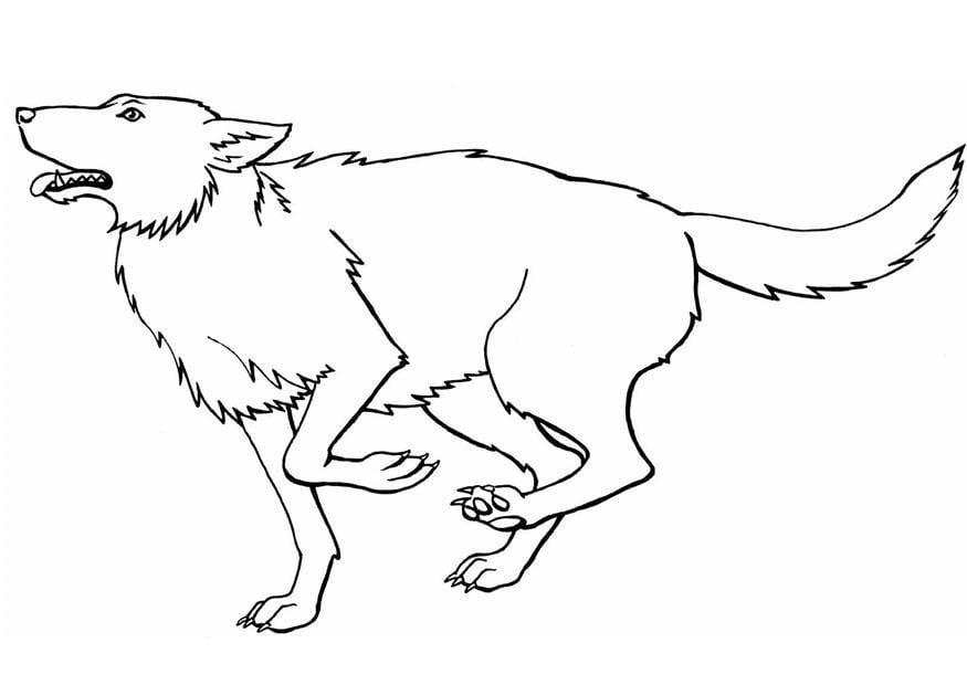 Disegno da colorare lupo cat 8917 - Lupo mannaro immagini da colorare ...