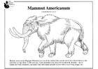 Disegno da colorare mammut americano