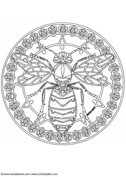 Disegno da colorare mandala api