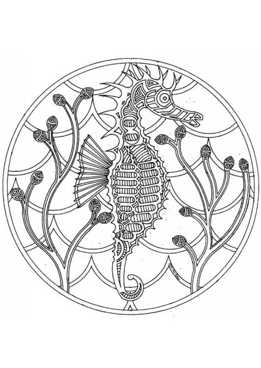 Disegno da colorare mandala cavalluccio marino cat 4544 for Cavalluccio marino da colorare