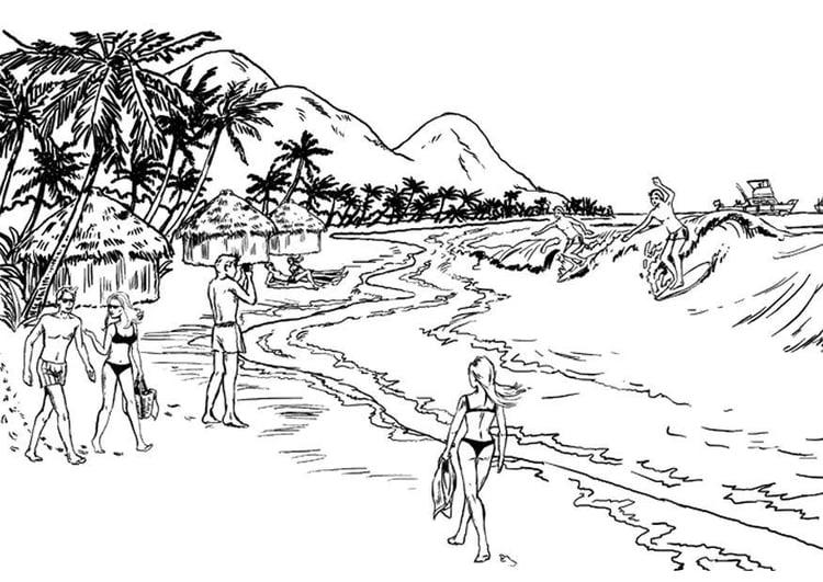 Disegno Da Colorare Mare Spiaggia Cat 8045