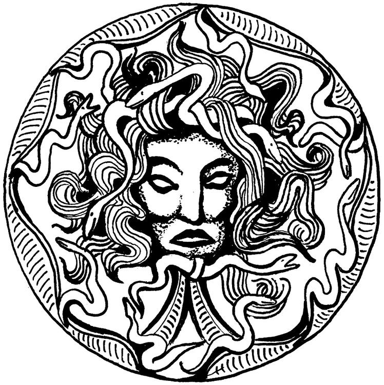 Disegno da colorare medusa cat 16019 for Medusa da colorare