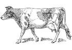 Disegno da colorare mucca