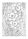 Disegno da colorare narciso