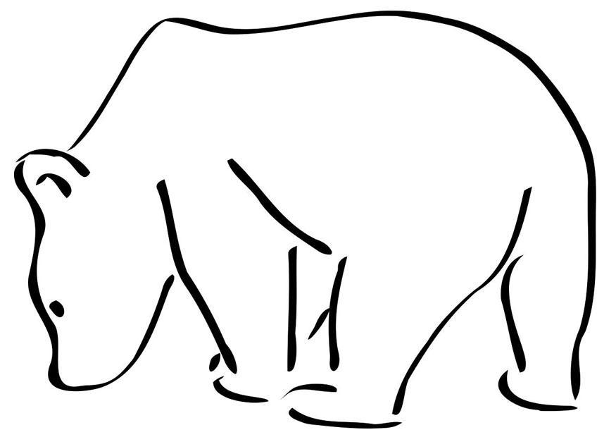 Disegno Da Colorare Orso Polare Disegni Da Colorare E Stampare