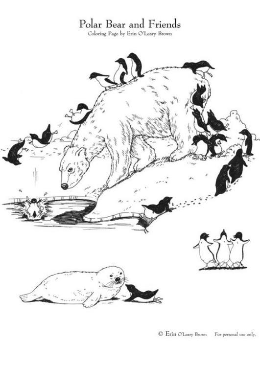 Pinguino Disegno