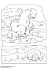 Disegno da colorare orso polare