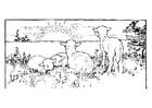Disegno da colorare paesaggio con agnelli
