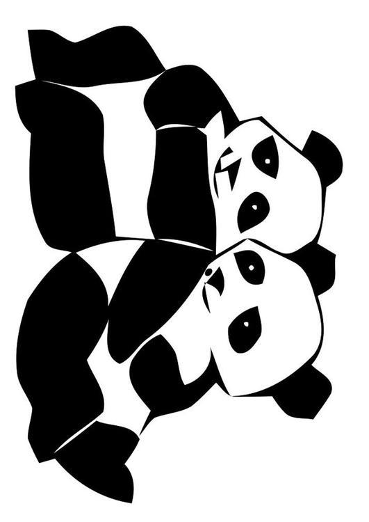 Disegno Da Colorare Panda Cat 19629