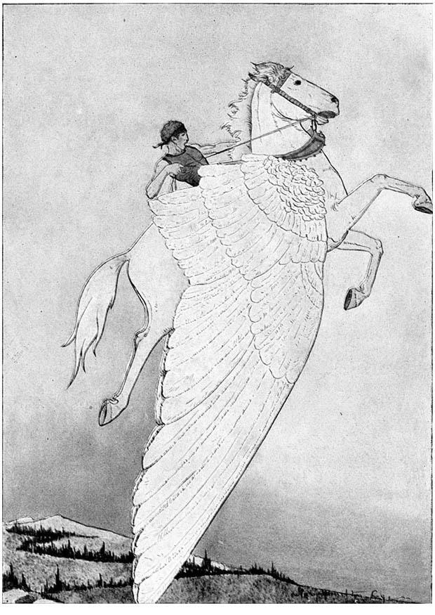 Disegno da colorare pegaso sul cavallo alato cat 18637 for Disegno cavallo per bambini