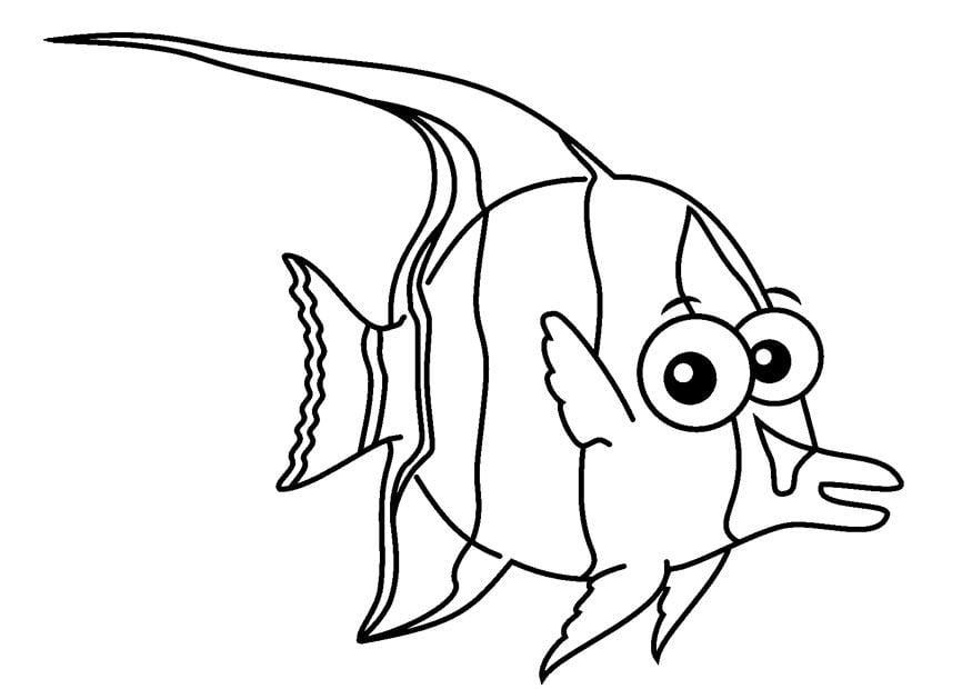 Disegno da colorare pesce cat 23087 for Immagini di pesci da stampare