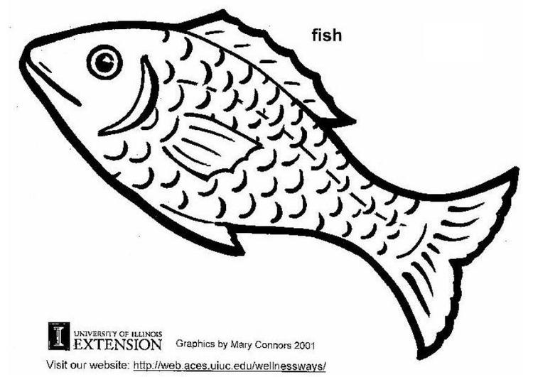Pesci Disegni Da Colorare