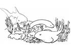 Disegno da colorare pesci e squali