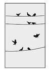 Disegno da colorare piccioni