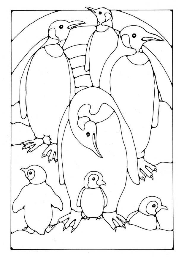 Disegno da colorare pinguino cat 19580 for Pinguino da colorare