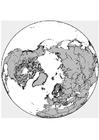 Disegno da colorare Polo Nord