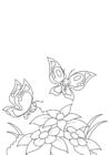 Disegno da colorare primavera, farfalle dai fiori