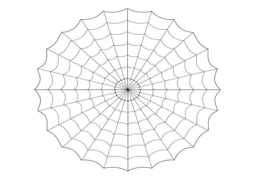 disegno da colorare ragnatela