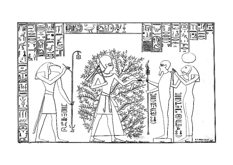 Disegno Da Colorare Ramses E L Albero Della Vita Cat 12471
