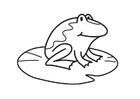 Disegno da colorare rana