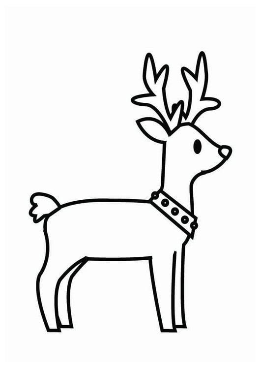 Disegni Di Natale Renne.Disegno Da Colorare Renna Di Natale Cat 26704 Images
