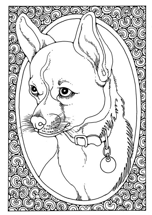 Disegno da colorare ritratto di cane cat 28205 for Cane disegno da colorare