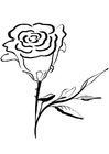 Disegno da colorare rosa