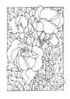 Disegno da colorare rose