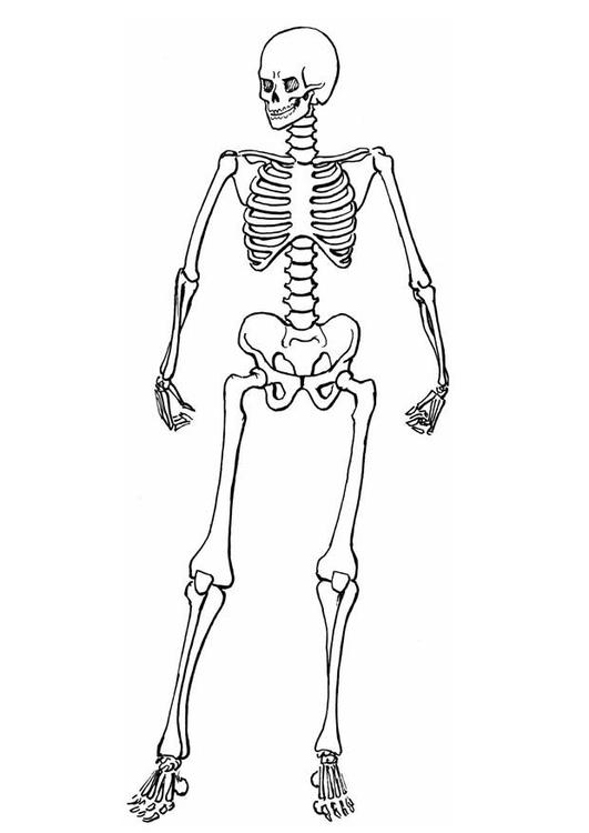 Disegno da colorare scheletro cat 8910 - Scheletro foglio da colorare ...