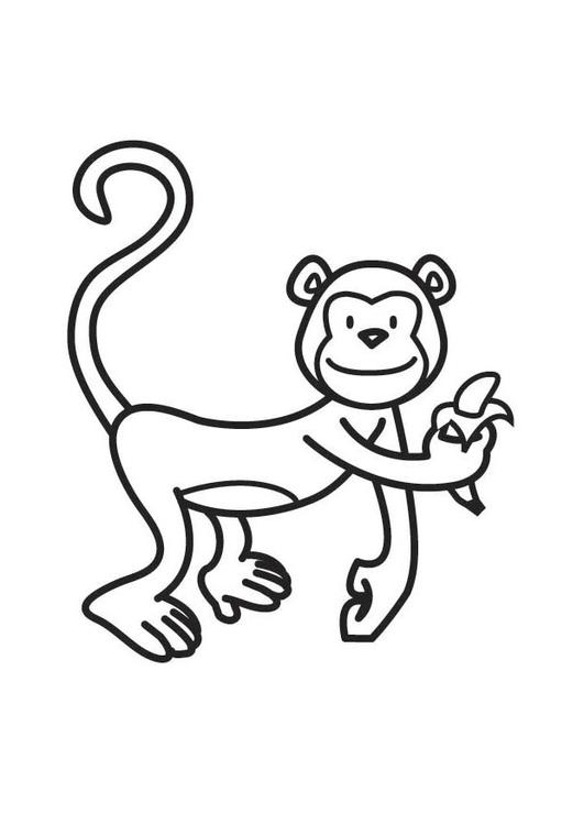 Disegni Da Colorare Animali Scimmia.Disegno Da Colorare Scimmia Disegni Da Colorare E Stampare Gratis