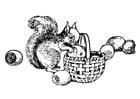 Disegno da colorare scoiattolo