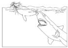 Disegno da colorare squalo attacca foa