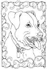 Disegno da colorare staffordshire bull terrier