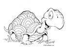 Disegno da colorare tartaruga