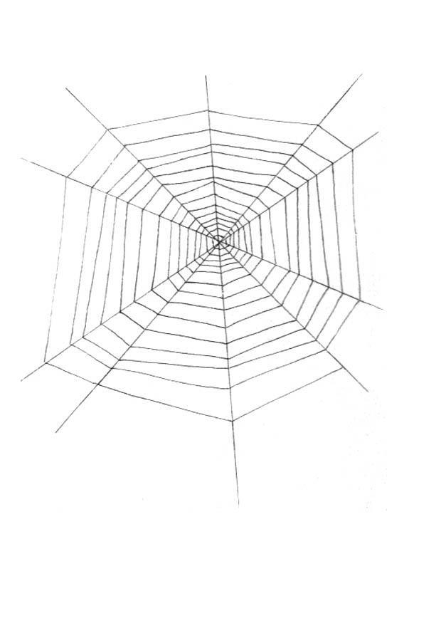 Disegno da colorare tela di ragno cat 18991 - Immagini del ragno da stampare ...