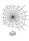Disegno da colorare tela di ragno