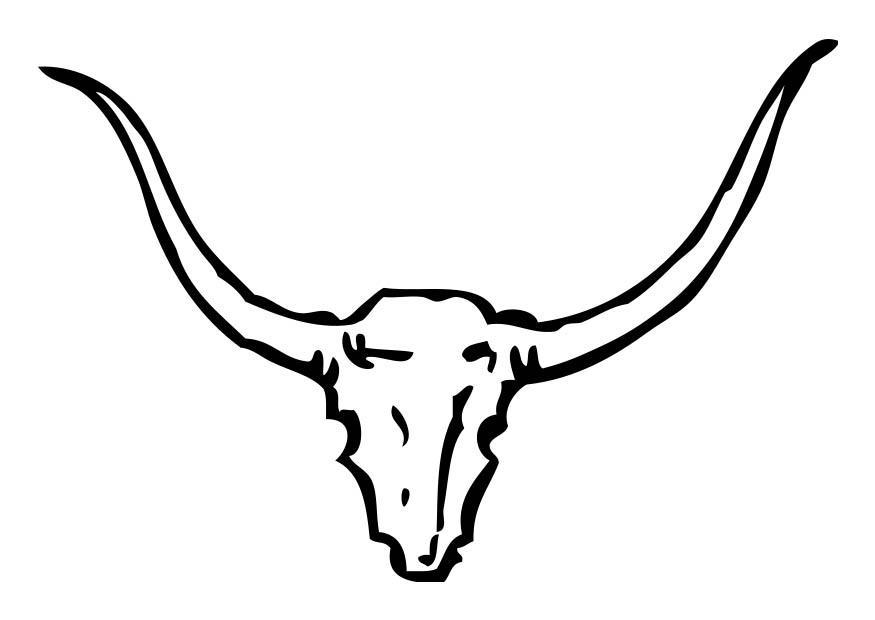 Disegno Da Colorare Teschio Di Toro Cat 18239