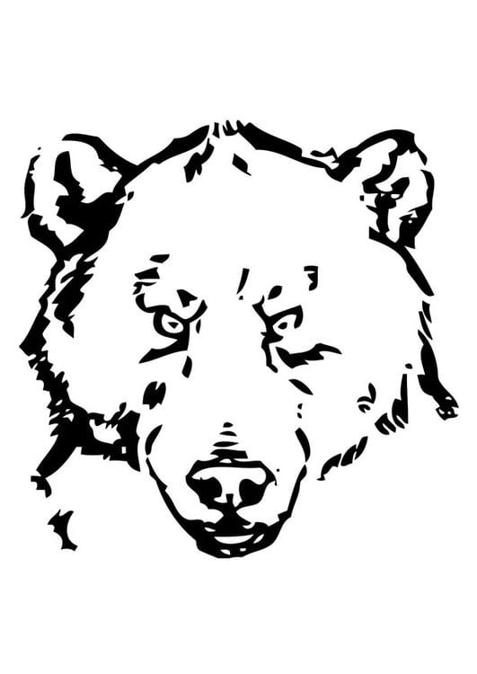 Disegno Da Colorare Testa Di Orso Cat 19387