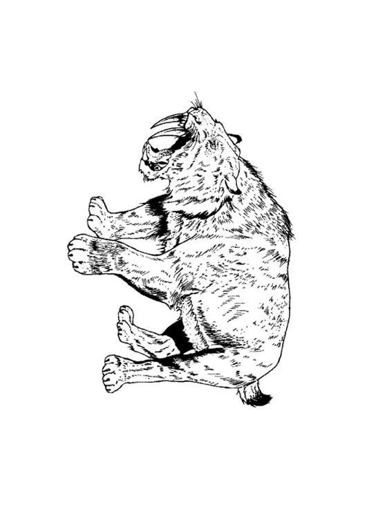Disegno Da Colorare Tigre Con Denti A Sciabola Cat 9106 Images