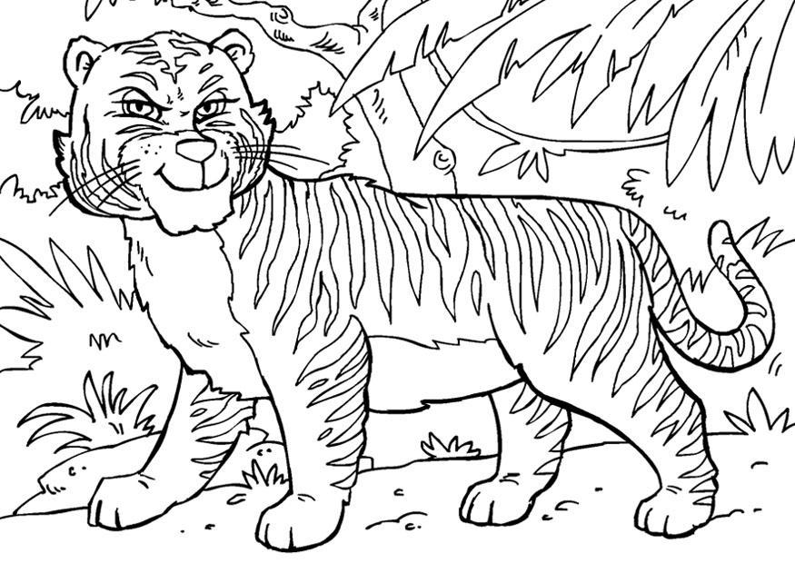 Disegno da colorare tigre cat 27858 for Immagini tigre da colorare